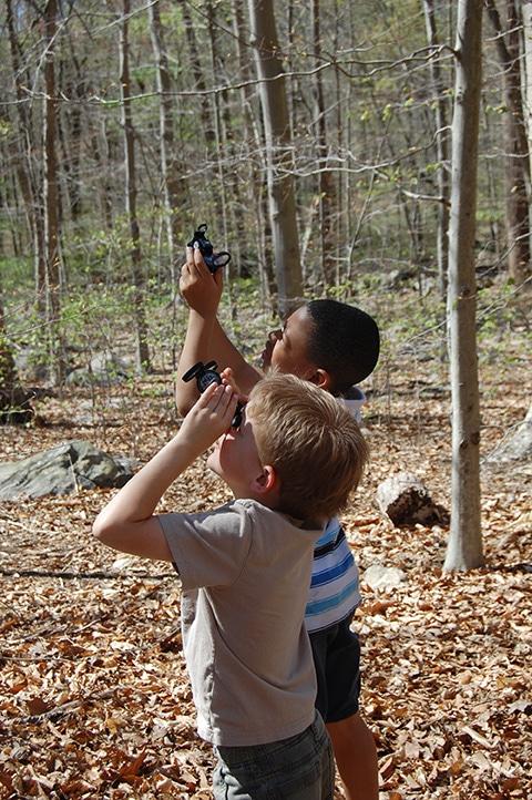 Boys looking for birds