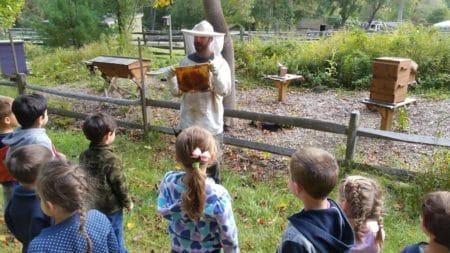 Preschool | Stamford Museum & Nature Center